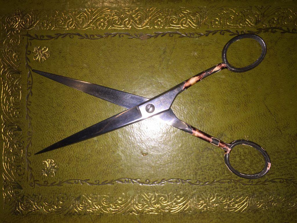 Kain-Abel scissors