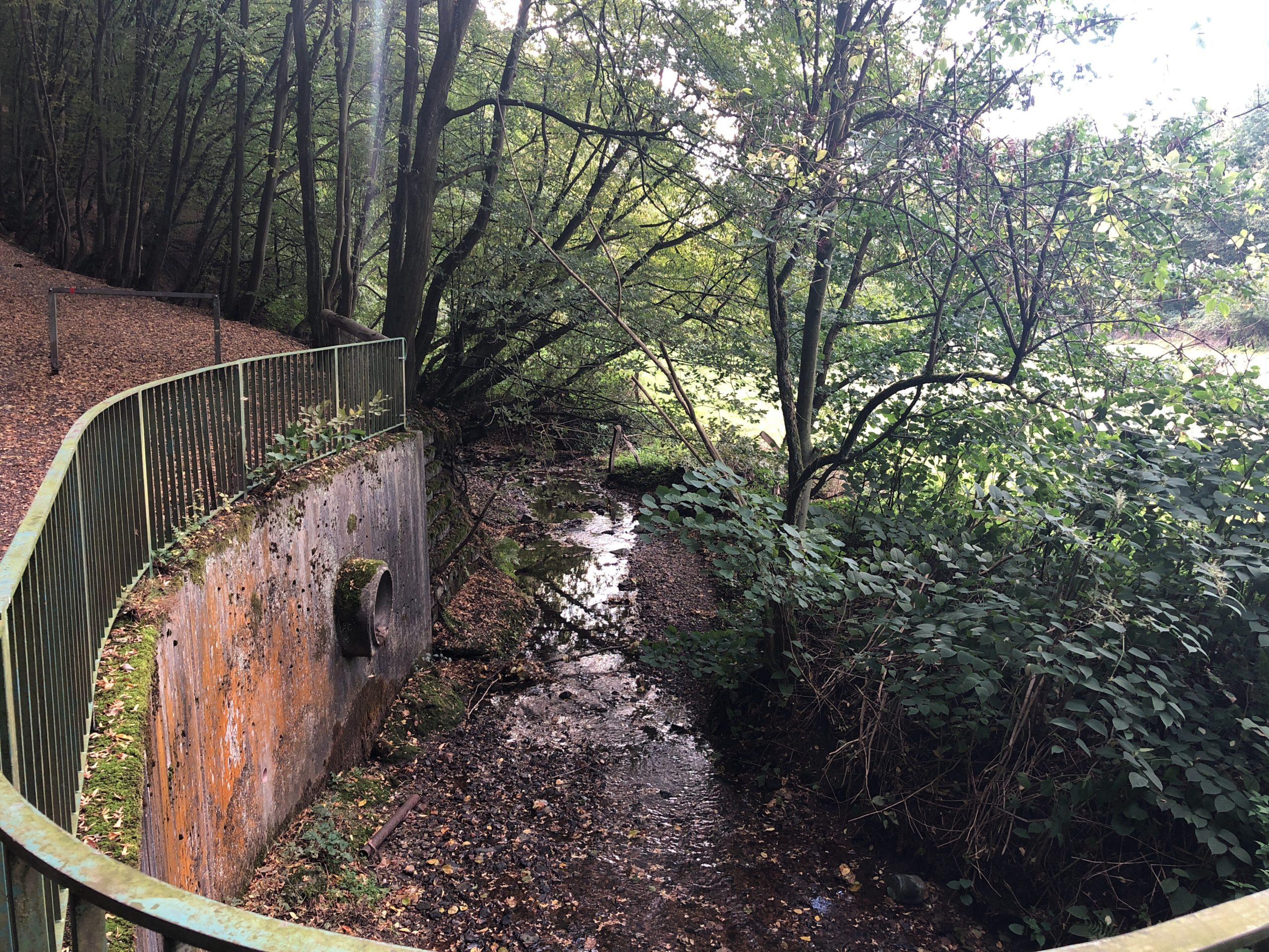 Zufluss Schaafenmühler Bach zum Nacker Bach
